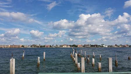 gulf of mexico: Gulf of Mexico vista