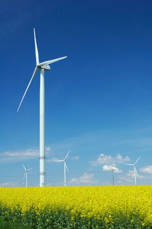wind force: farm of windturbines close to rape field France