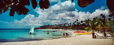 palmtree: Long beautiful beach at Bayahibe - Dominican republic