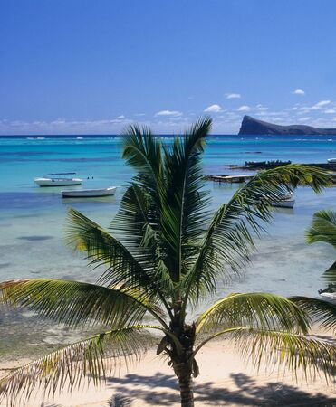 mire: Palm tree, Lagoon  and coin de mire island. Bain Beauf beach. Cape Malheureux, Mauritius Island, Indian Ocean