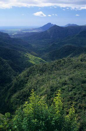 noire: Black river gorge (Gorge de la riviere noire), Black river district, Mauritius Island, Indian Ocean