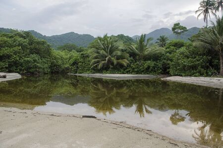 Colombian landscape, in the foreground the forest of Tayrona National Park is reflected, in the background, under a cloudy sky, the mountains of the Sierra Nevada de Santa Marta are seen. 스톡 콘텐츠