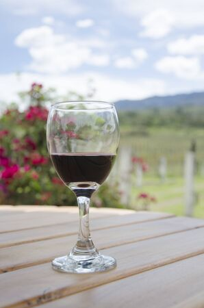 Glass of red wine on a table in an outdoor garden near a vineyard, Villa de Leyva, Colombia