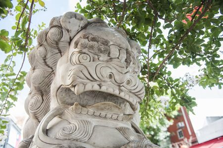 Capital Federal, Buenos Aires  Argentina; Jan 25, 2020: Chinese lion located in Chinatown