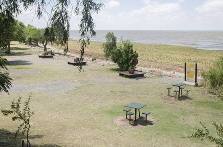 Costanera Sur ecological reserve, a beautiful natural recreation place in Buenos Aires, Argentina. The shore of Rio de la Plata river is full of aquatic plants, water hyacinth, Eichhornia crassipes