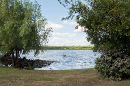Mercedes, Soriano / Uruguay; Dec 26, 2018: summer landscape on the bank of the Rio Negro: grass with trees and bushes, calm water and a man sailing in a rowboat.