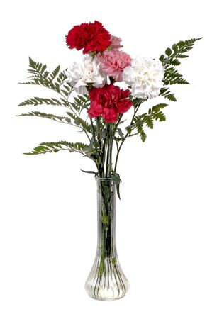 Beautiful carnations bouquet in a tall glass vase. Focus = the pink carnation. Isolated. 12MP camera.