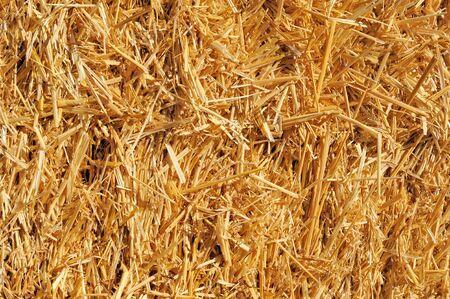 Bale of Straw, high resolution. Фото со стока