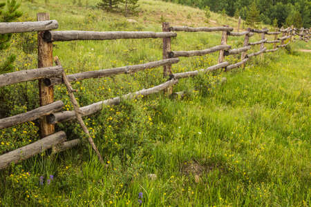 An old rustic fence surrounded by wildflowers in Colorado photo