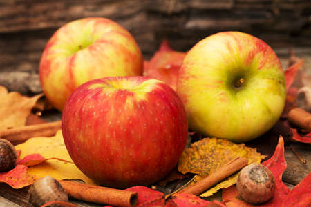 Apples and Fall leaves in Autumn photo