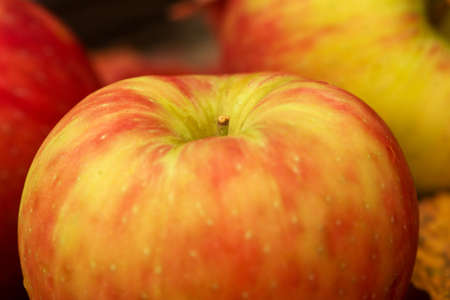 Apples and Fall leaves in Autumn close up photo