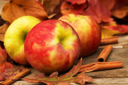 Apples and cinnamon sticks in Autumn photo