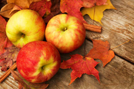 Apples and cinnamon sticks in Autumn photo