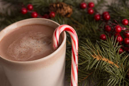 Hot chocolate, candy cane and evergreen boughs with holly berry close up photo