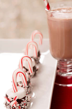 Hot chocolate and marshmallows with candy canes for Christmas photo