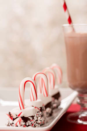 Marshmallows with candy canes and hot chocolate Christmas treats photo