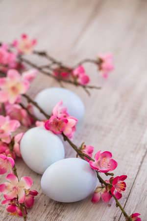 Pastel blue Easter Eggs and Cherry Blossom branches photo