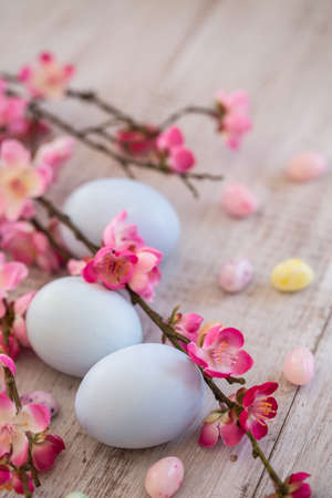 Three pastel blue Easter eggs with jelly beans and Cherry Blossom branches photo