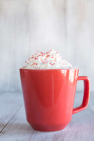 whipped: Winter cold beverage hot chocolate drink with whipped cream and sprinkles