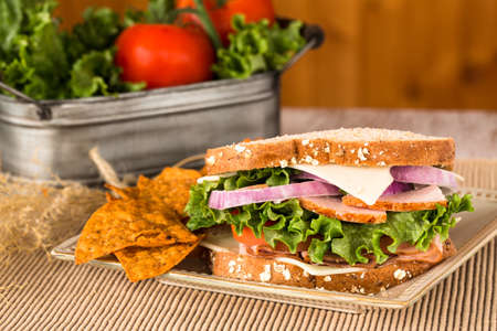 swiss cheese: Delicious lunch sandwich with ham and turkey and swiss cheese