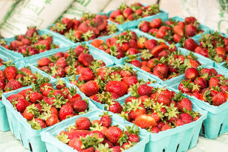 Baskets of fresh strawberries at the farmers market in Knoxville Tennessee