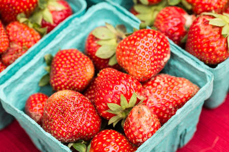 Close up of fresh red strawberries at the farmers market in Knoxville Tennessee Stock Photo