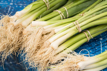 Bunches of green onions on a table at the farmers market in Knoxville Tennessee Stock Photo