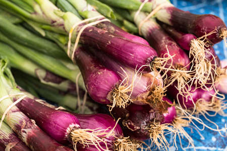 Red onions on a table at the farmers market in Knoxville Tennessee
