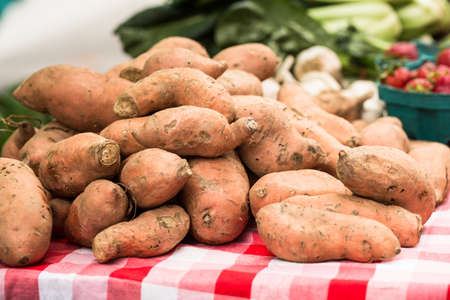 Sweet potato yams at the farmers market in Knoxville Tennessee Stock Photo