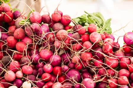 Bunch of radishes piled up on a table at the farmers market in Knoxville Tennessee