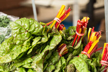 Chard lettuce on a table at the farmers market in Knoxville Tennessee