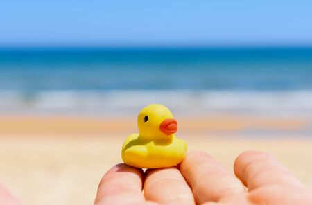 Hand Holding Rubber Duck
