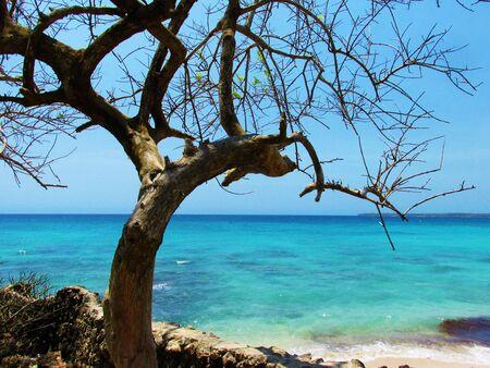 playa blanca: Playa Blanca - Isla Baru Stock Photo