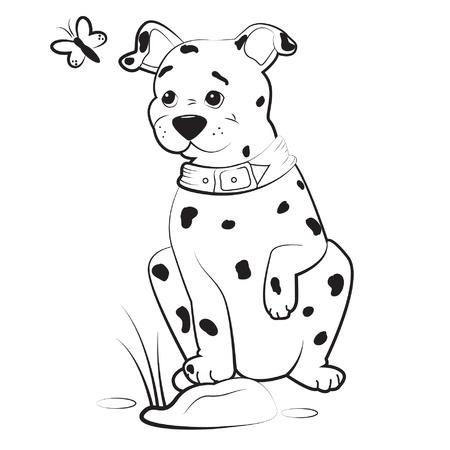 dalmatian puppy: Dalmatian puppy, vector illustration Illustration