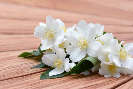 patrones de flores: mock orange acostado en la madera