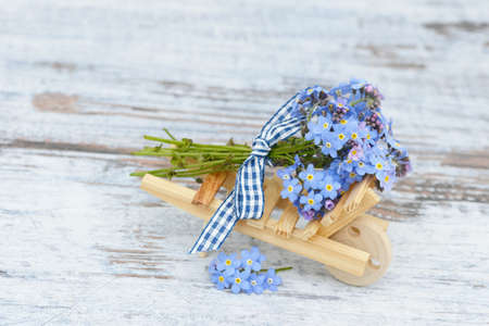 forget me not: forget me not on wood Stock Photo