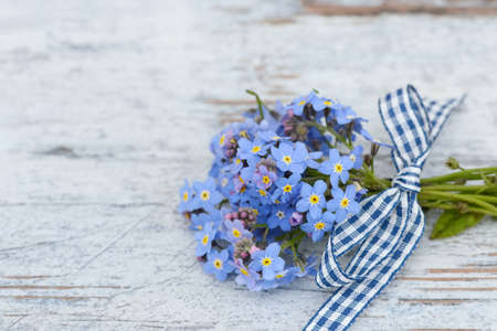 arrangements: forget me not on wood Stock Photo