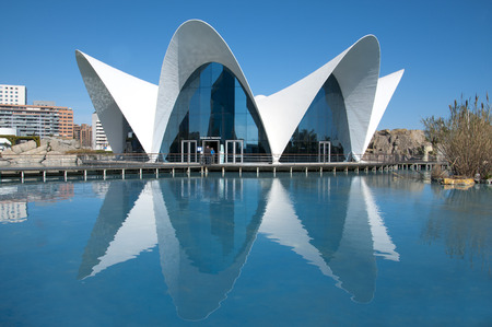 oceanographic: Oceanographic in The City of Arts and Sciences Valencia, Spain