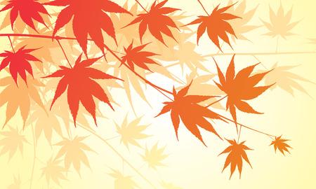 mooie warme Japanse esdoorn achtergrond  Vector Illustratie