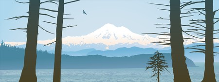 Mount Baker, Washington State panoramic. Looking over the straight from Vancouver Island with tree trunks and a young tree in the foreground.