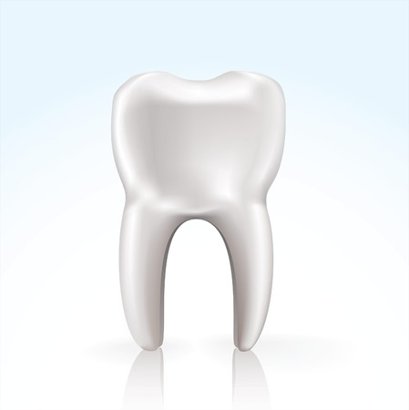 realistic tooth on soft blue background with reflection