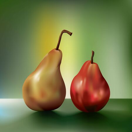 reflection of life: two pears side by side, created using gradient mesh Illustration