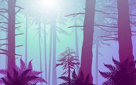 enchanted forest in cool colors. Lots of ferns in the foreground with sun shining through the canopy Vector