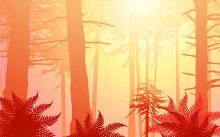 enchanted forest in warm colors. Lots of ferns in the foreground with sun shining through the canopy