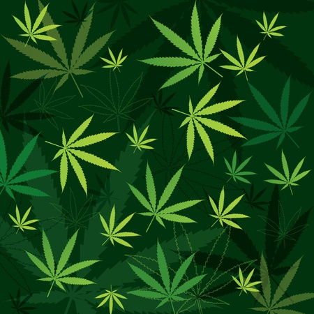 cannabis sativa: green marijuana background with leaves in different shades of green Illustration