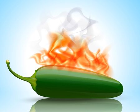 red jalapeno: Burning Hot Jalapeno Pepper
