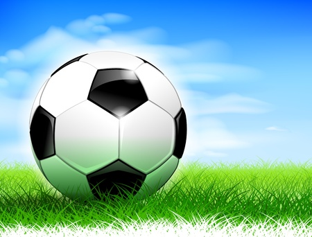 soccer field: Detailed soccer ball on lush soccer field. Illustration