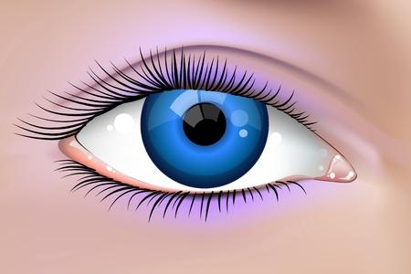 ojos azules: Ilustración de un ojo de mujer joven y bella