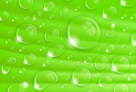 beautiful fresh background with waterdrops on a leaf Vector