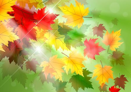 Beautiful illustration of maple leaves blowing in the wind and sun rays coming through.